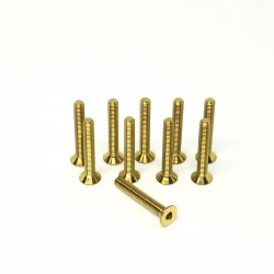 M3x20 Tapered head screws (x10) Titanium Grade 5 Gold coated