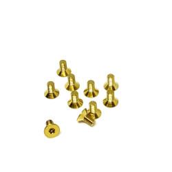 M3F6 M3x6 Tapered screws (x10) Titanium Grade 5 Gold coated  RSRC