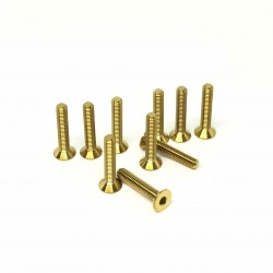 M3x16 Tapered head screws (x10) Titanium Grade 5 Gold coated