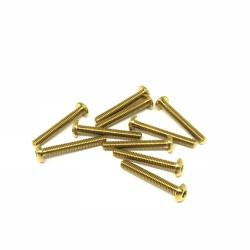 M3R20 M3x20 Buttonhead screws (x10) Titanium Grade 5 Gold coated  RSRC