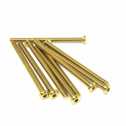 M3x44 Buttonhead screws (x10) Titanium Grade 5 Gold coated