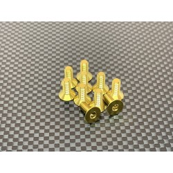 M4F10 M4x10 Tapered head screws (x10) Titanium Grade 5 Gold coated  RSRC