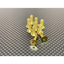 M4F12 M4x12 Tapered head screws (x10) Titanium Grade 5 Gold coated  RSRC