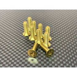 M4F14 M4x14 Tapered head screws (x10) Titanium Grade 5 Gold coated  RSRC