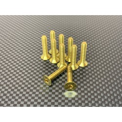 M4F16 M4x16 Tapered head screws (x10) Titanium Grade 5 Gold coated  RSRC