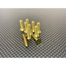 M4x20 Tapered head screws (x10) Titanium Grade 5 Gold coated